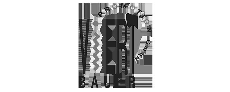 viertbauer_logo_vektor